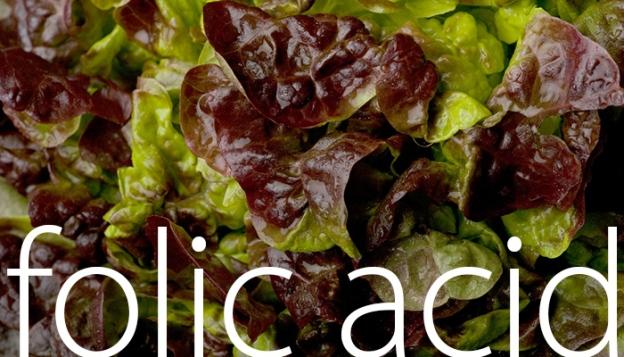 FolicAcid-web